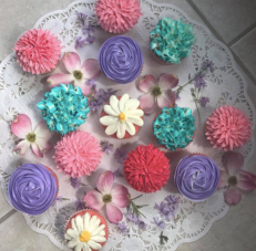Screen Shot 2017-05-01 at 11.26.20 AM