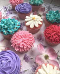 Screen Shot 2017-05-01 at 11.26.53 AM